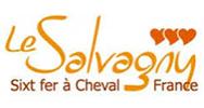 Le Salvagny